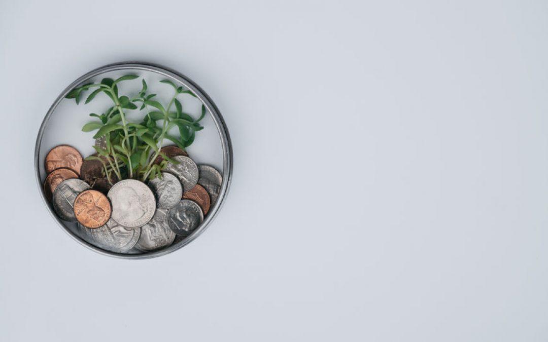 Cash-management – 5 voordelen van het werken met Profit First